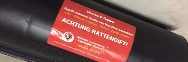 Kammerjäger Nordenham, Kammerjäger Oldenburg, Kammerjäger Bremen, Wespen vertreiben, Ratten im Haus, Ratten im Garten, Marder vertreiben, Mäuse im Haus, Ratten bekämpfen